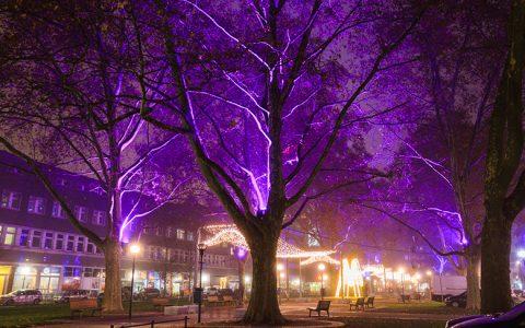 TWL Lichterzauber lässt Ludwigshafen glänzen