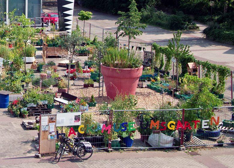 Ludwigshafen blüht auf im Hack-Museumsgarten