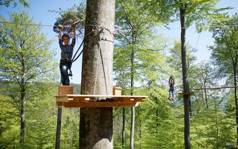 Ziplinepark: An Stahlseilen durch Baumkronen