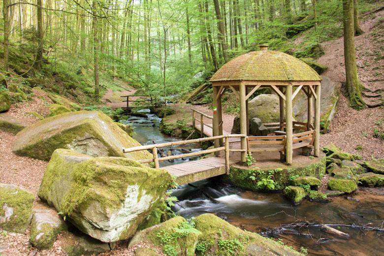 Beim Wandern in der Pfalz Energie tanken