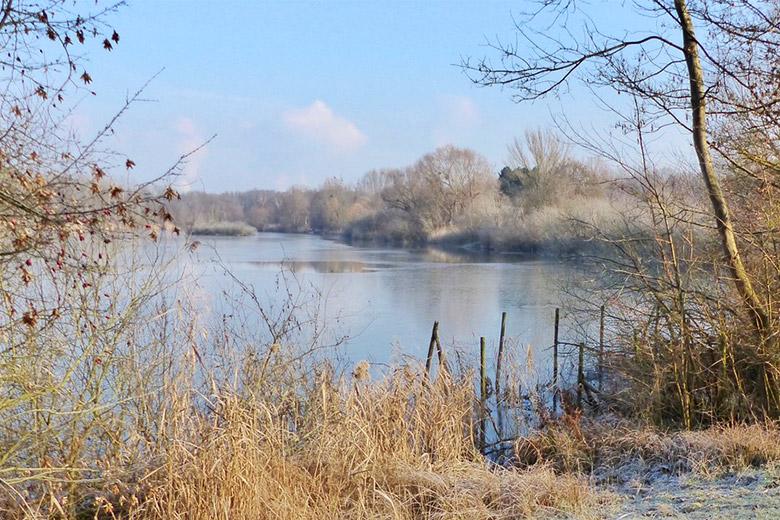 Winterwanderung durchs Maudacher Bruch